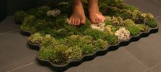 Moss Bathmat: To create it, get yourself a length of thick polyethylene foam from the hardware store, carve out cups for your mosses to be tucked into, and then place it outside your bathtub or shower enclosure to soak up drips when you step onto it.