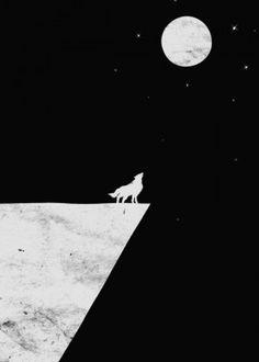 wolf moon nature black white