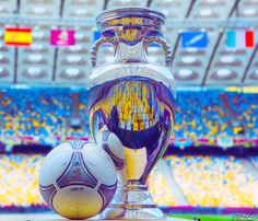 Eurocopa! #EURO2012 #FCB #Barca #FCBarcelona #Spain Euro 2012