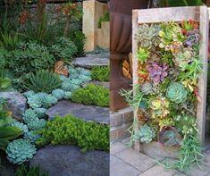 Egy tehetséges kertész mutatott néhány gyönyörű ötletet, hogyan tehetem káprázatossá a kertet!