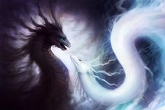 Yin and Yang Dragons Painting Print on Wrapped Canvas