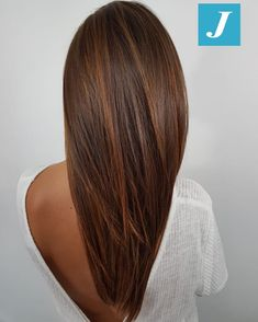 Ombre Hair Color For Brunettes