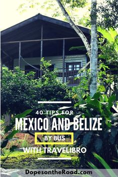 Checking out Mexico and Belize by bus is easier than you my think. We're giving out all the details on the Travelibro app.