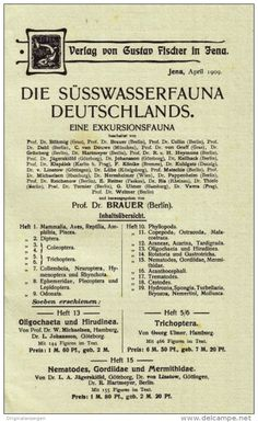 Original-Werbung/Prospekt 4-seiter 1970 - DIE SÜSSWASSERFAUNA DEUTSCHLANDS / VERLAG GUSTAV FISCHER - je ca. 130 x 220 mm
