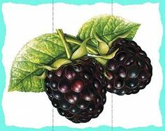 Разрезные пазлы, ягоды Natural, Wreaths, Fruit, Halloween, Food, Decor, Wall, Puzzles, Decoration