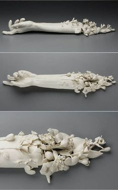 "The meticulous and macabre sculptures of Kate MacDowell. ""These pieces are in part responses to environmental stressors including climate change, toxic pollution, and gm crops. Hand Sculpture, Sculptures Céramiques, Ceramic Sculptures, Kate Macdowell, Instalation Art, 3d Studio, Wow Art, 3d Prints, Paperclay"