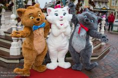 aristocats pictures and characters | Aristocats (Movie) at Disney Character Central