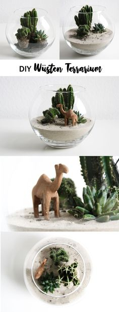 DIY kleine Wüste im Glas DIY small desert in the glass & Terrarium & Succulents & Plants & Camel & Urban J & The post DIY small desert in the glass appeared first on Leanna Toothaker.