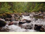 Umpqua National Forest - Special Places