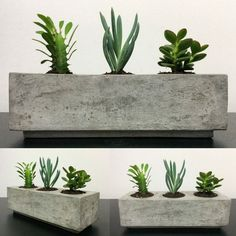 Vaso em cimento com 3 furos para plantio de suculentas e cactos. Cimento lixado e envernizado.