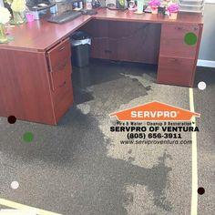 Servpro Of Ventura Servpro9670 Profile Pinterest