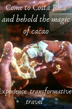 Join me on a transformative trip to Costa Rica - Chocolatour with Doreen Pendgracs Small Group Tours, Small Groups, Meet Locals, Custom Chocolate, Costa Rica Travel, Central America, North America, Cruise Travel, American Country