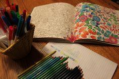 Pix 'n Prose Adult Colouring Book - Secret Garden