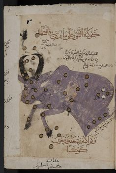 Constellations: the constellation of Taurus, the bull (2). Astrological-astrono mical picture. From a 15th-century Arabic collectaneous manuscript known as Kitab al-bulhan.