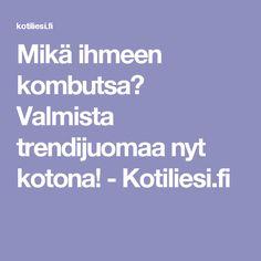 Mikä ihmeen kombutsa? Valmista trendijuomaa nyt kotona! - Kotiliesi.fi