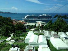 Artificial Coral, Aquarium Decorations, Royal Princess, Cruise Ships, Marina Bay Sands, Building, Travel, Beautiful, Home