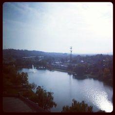 The calm before the #frankenstorm? #JMUDukes #Homecoming2012 #jmugsu