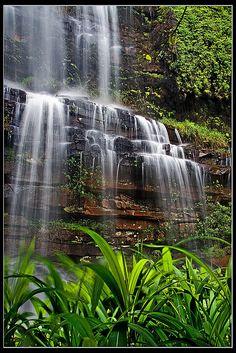 Rainforest Falls By John & Tina Reid Kranzkloof Nature Reserve near Pietermaritzburg in South Africa