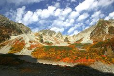 【上高地】観光・宿泊・トレッキング・高山植物・キャンプ・交通・総合情報