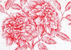 "Red Ink Drawing - Flower Art - Red Wall Art Decor - Hand Drawn 5x7"" Flower Illustration - ""Ruby Love"""