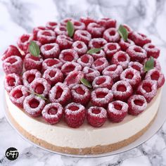 – Entremets et jolis gâteaux… - Kuchen Turtle Cheesecake Recipes, Easy No Bake Cheesecake, Baked Cheesecake Recipe, Cheesecake Desserts, Classic Cheesecake, No Bake Cookies Recipe Peanut Butter, Healthy No Bake Cookies, Easy Cookie Recipes, Dessert Recipes