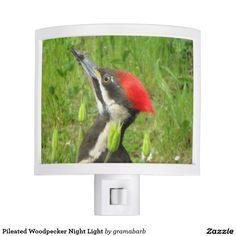 Pileated Woodpecker Night Light