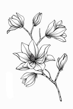 Art drawings 42 Simple and Easy Flower Drawings for Beginners - Cartoon District Easy Flower Drawings, Flower Sketches, Pencil Art Drawings, Art Drawings Sketches, Tattoo Drawings, Tattoos, Tattoo Sketches, Tattoo Art, Motifs Art Nouveau