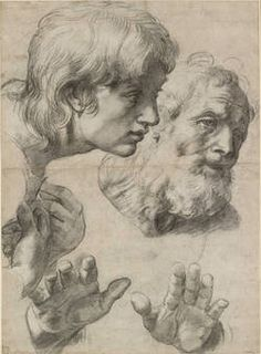 Raphael, 'Studies of two Apostles for the Transfiguration', Black chalk with faint white chalk on off-white paper