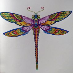 Johanna Basford | Colouring Gallery Coloring Tips, Coloring Books, Coloring Pages, Adult Coloring, Dragonfly Tattoo Design, Dragonfly Wings, Dragonfly Illustration, Fly Drawing, Enchanted Forest Coloring Book