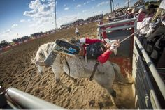 Throughout the spring and summer there are 40 small town rodeos going on around Alberta. #travel