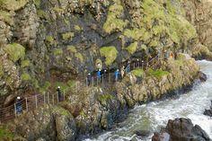 This little island of ours has no shortage of breathtaking sights, but you probably think you've seen them all at this point. However, you might have never made the journey to The Gobbins in Islandmagee, Co. Walking Routes, A Hundred Years, Little Island, Emerald Isle, Might Have, Day Trips, Dublin, Walks, Ireland