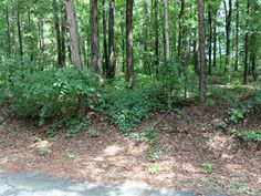 Gorgeous 1.02 Acre lot to build your dream home on Convenient location to Anderson Pendleton and Clemson. Quiet area mature trees on fairly level lot near other well maintained homes.