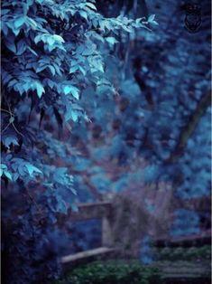 Blur Image Background, Background Wallpaper For Photoshop, Desktop Background Pictures, Black Background Photography, Photo Background Editor, Photo Background Images Hd, Editing Background, Picsart Background, Best Hd Background