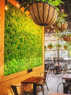 Wer grün lebt, tut das nicht nur durch seine Ernährung. Auch grüne Inneneinrichtung mit vielen Pflanzen (wie in stylischen Pflanzenkörben) und Holztische unterstützen diese Lebenseinstellung. Alles ist eine Einheit.