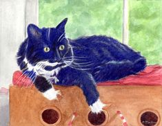black and white cat art black and white cat print tuxedo cat art cat print cat watercolor cat wall art from painting by p tarlow