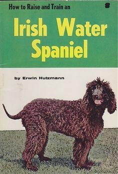 VINTAGE IRISH WATER SPANIEL BOOK IRISH WATER SPANIEL HOW TO RAISE  | eBay