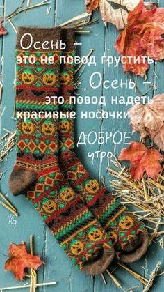Good Morning, Christmas Stockings, Holiday Decor, Fall, Buen Dia, Needlepoint Christmas Stockings, Autumn, Bonjour, Fall Season