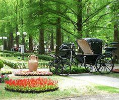 A #Boario convegni ed esperti sui #fiori e le #erbe commestibili