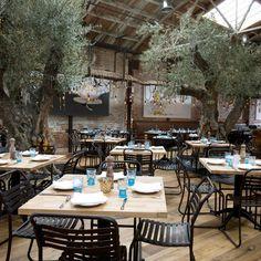 Herringbone - La Jolla, California - Top Chef: Miami's Brian Malarkey tapped Top Chef: Washington, DC contestant Amanda Baumgarte