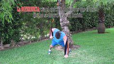 Nuevo coleccionable en vídeo para Vitónica. En este artículo tienes el vídeo entrenamiento en suspensión: Press Pectoral, con los 8 primeros e... Suspension Training, Videos, Bending, Training, Exercises