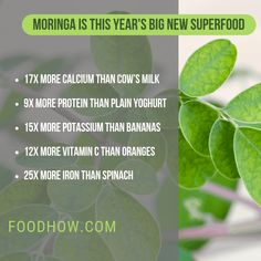 calcium shortage natural remedy, What are the symptoms and signs and the most effective food to eat to counter deficiency Moringa Oleifera Benefits, Calcium Benefits, Types Of Yogurt, Miracle Tree, Calcium Deficiency, Weight Loss Herbs, Healthy Body Weight, Healthy Eyes, Good Foods To Eat