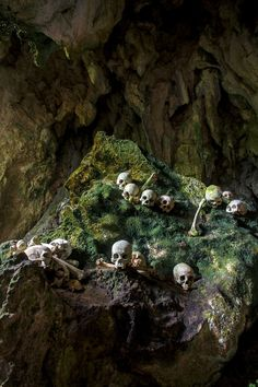 Lombok Village, Indonesia | 20 Crazy Facts About The World's Most Incredible Burial Sites