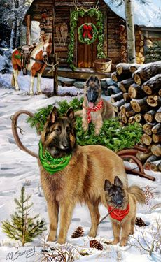 Belgian Tervuren Christmas Camp Christmas cards -  by Margaret Sweeney