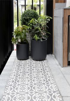 Cluster of pot plants l Outdoor terrace l Patterned outdoor tiles