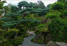 Wycieczki wkraj'a: Ogród Japoński w Jarkowie