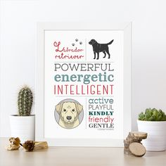 **Ilustración de perro raza Labrador Retriever amarillo** para amantes de las mascotas con las principales características que hacen única a esta raza.  Tenemos disponibles muchas mas razas, si...