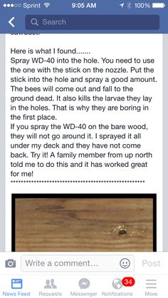 To get rid of carpenter bees