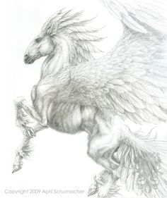 91 Best Pegasus To Color Images Horses Pegasus Unicorn