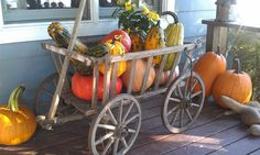 My mom's goat cart filled with pumpkin