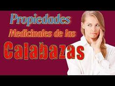 Propiedades Medicinales De Las Calabazas - Las Calabazas Tienen Múltiples Beneficios - YouTube